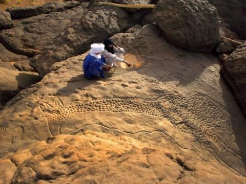 오늘날의 사하라 사막의 광대 한 부분은 수천 년 전 녹색이었습니다
