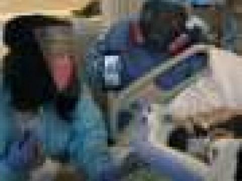 미국, 3 번의 전쟁으로 인한 사망자 수와 일치하는 500,000 명의 바이러스 사망