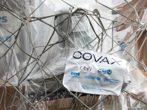 브라질 레체 베라 as primeiras vacinas contra COVID-19 기준 meio do Mecanismo COVAX neste domingo