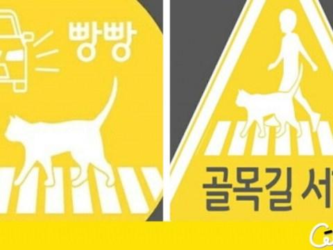 Terapkan untuk stiker kendaraan 'pencegah penyakit kucing' gratis