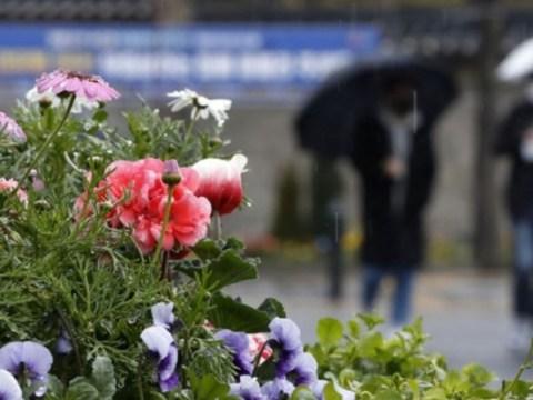 [Cuaca] Hujan musim semi di seluruh negeri pada Senin sore …  Sepertinya akan berhenti pada Selasa pagi