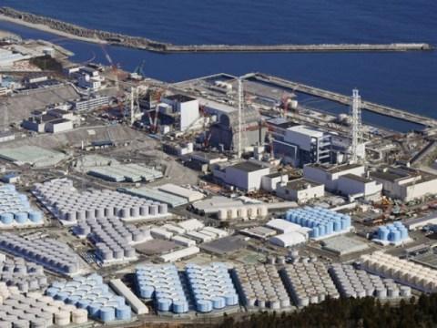 """China """"Politisi Jepang, cobalah minum air langsung dari pembangkit listrik tenaga nuklir"""" …  Duta Besar Jepang Chochi"""
