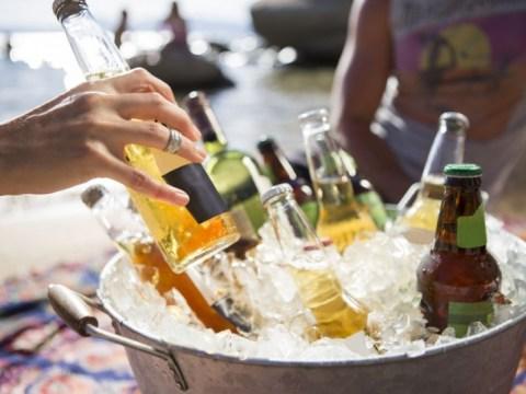 이번 여름에 마시고 싶은 24 가지 훌륭한 맥주