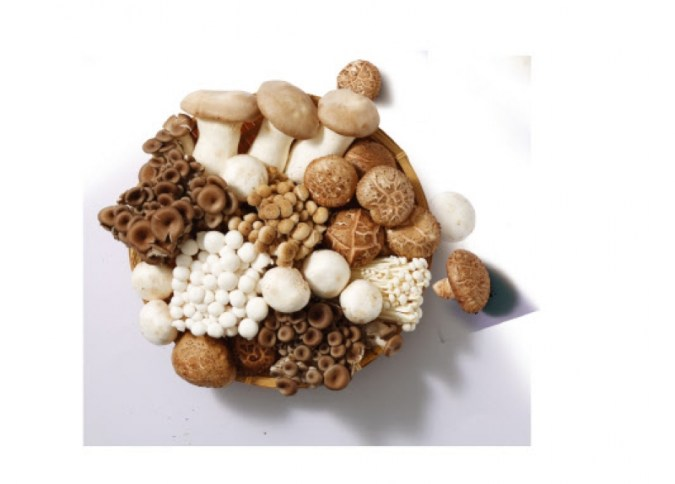 E-Mart mendiversifikasi jamur …  Varietas unik seperti mangadak dan rusa roe