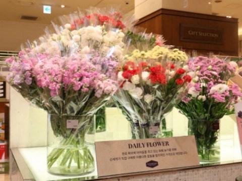 "Shinsegae Ratusan …  ""200 anyelir dan mawar dijual"""