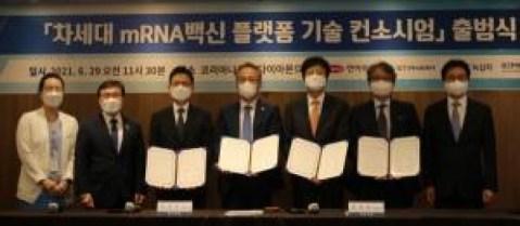 Mengembangkan vaksin virus corona dalam negeri!  …  Meluncurkan 'K-mRNA Consortium'