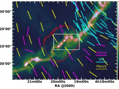 태양형 별 형성 코어에서 밝혀진 다양한 자기장