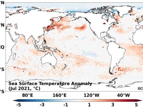 Suhu air pantai timur melonjak…  Rata-rata Juli 22,2 derajat, 3,3 derajat lebih tinggi dari 40 tahun yang lalu